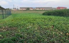 V Malom Šariši ponúkame na predaj novovytvorené pozemky